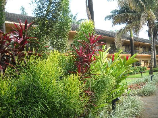 Munyonyo Commonwealth Resort: Lush gardens