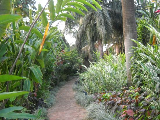 Munyonyo Commonwealth Resort: Garden
