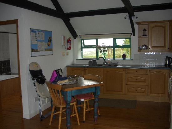 Treworgie Barton: Kitchen