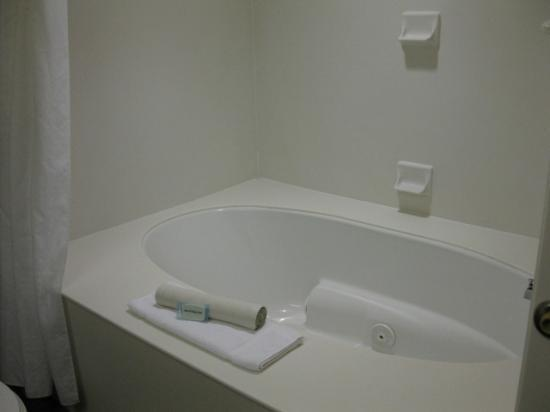 Holiday Inn Express Hotel & Suites Washington: jacuzzi suite