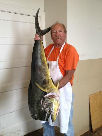Hil Mak's Seafood Restaurant : 25+# Fresh Mahi Mahi