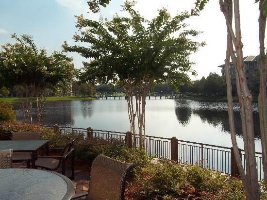 Hotel Indigo Jacksonville Deerwood Park: Love to  be near the water all the time..:)
