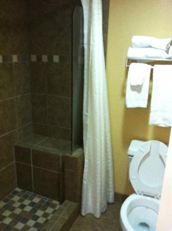 Old Creek Lodge: Bathroom with Glass wall walk-in shower