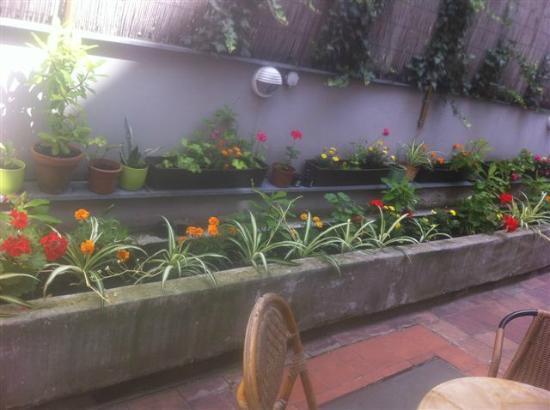 Restaurace Pod Viktorkou : The Garden-3