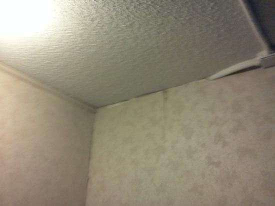 Ramada Overland Park : Walls and Ceiling