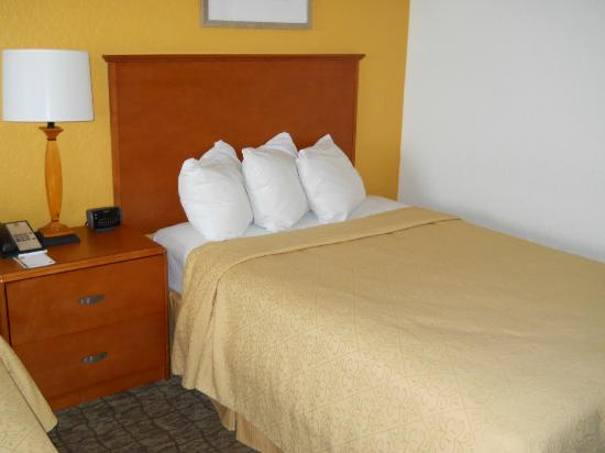 Quality Inn Miami Airport Hotel: One of the beds