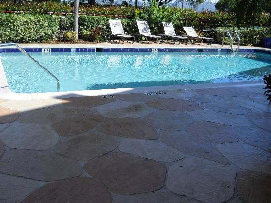 Quality Inn Miami Airport Hotel: Pool