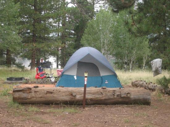 North Rim Campground: Tent Site #3