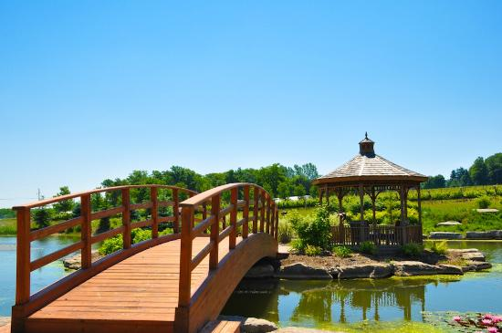 Hotels Near Beamsville Ontario
