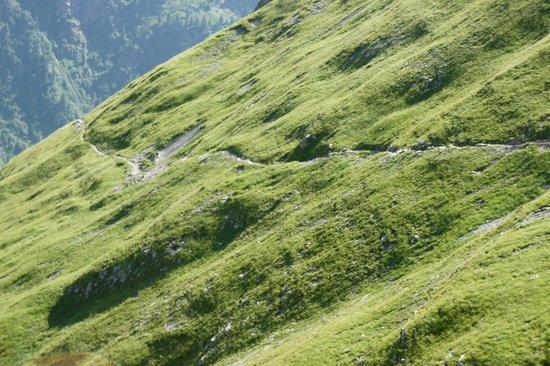 Berggasthaus Obersteinberg: The path to Obersteinberg