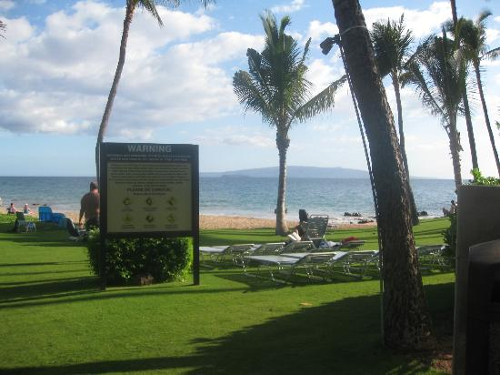 Mana Kai Maui: Lounge chairs on grassy area (much larger area than shown)