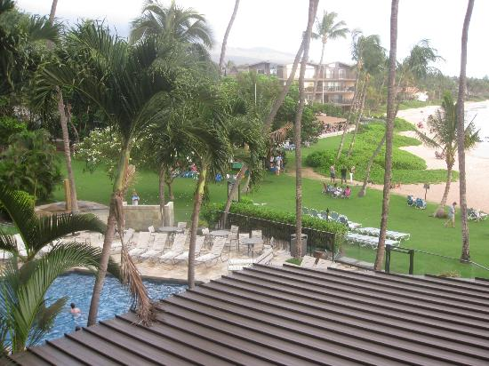 Mana Kai Maui: lounge chairs on patio are by pool. Grassy area behind palms are where BBQ is.