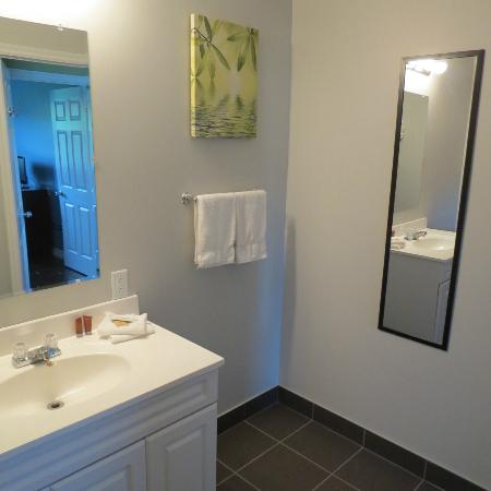 Gros Morne Suites: Bathroom