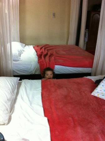 Cendana Resort and Spa: Deluxe room (2 doubles) and maggie. Insect drapes important
