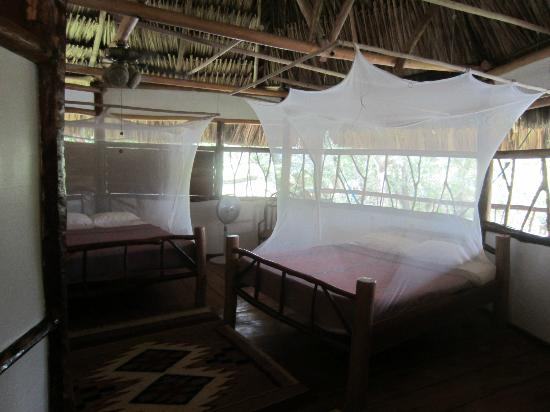 Cotton Tree Lodge: Room two Queen Beds (Fit 4 people)