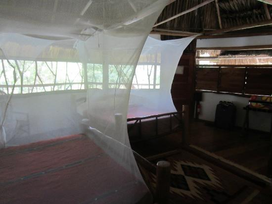 Cotton Tree Lodge: Room Interior, two queen beds (fit 4 people)