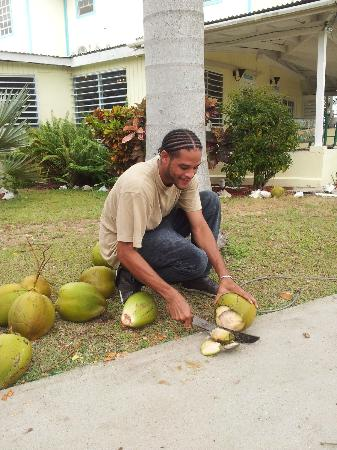 Cottages By The Sea: Cute coconut guy! ;)