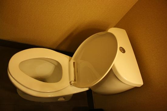 Holiday Inn Express Hotel & Suites Courtenay Comox Valley SW: two flush toilet