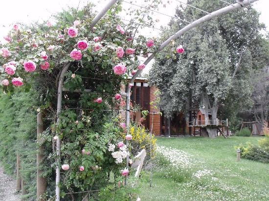 De la Plaza Aparthotel: Rosas, Parque y Club House