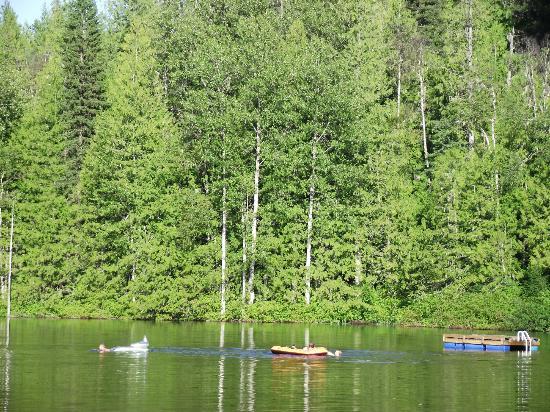 Cozy Cabins Nature Resort: More Lake 