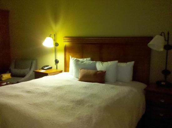 Hampton Inn Oklahoma City/Yukon: King room