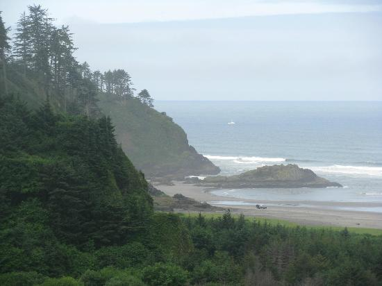Cape Disappointment State Park: Beach Overlook.