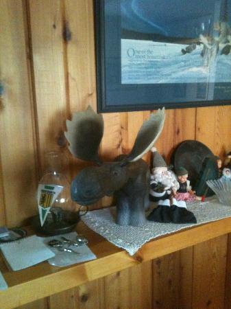 Alaska Chalet Bed & Breakfast: My favorite moose in the Chalet Suite