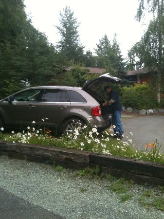 Alaska Chalet Bed & Breakfast: Auxiliary parking area. It was a full house!