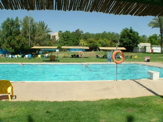 Almog Holiday Village: Swimming Pool