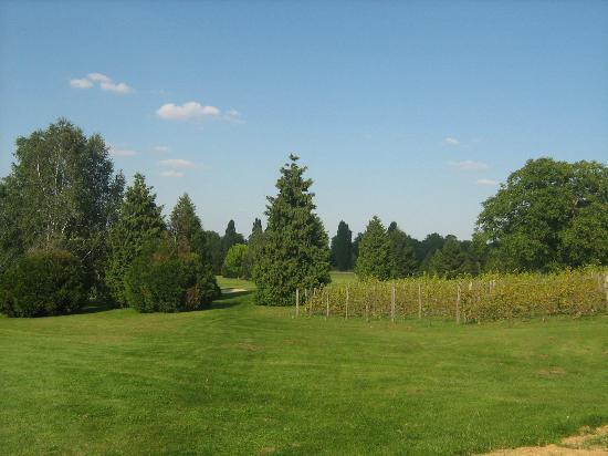 Domaine de Crecy : Golf again
