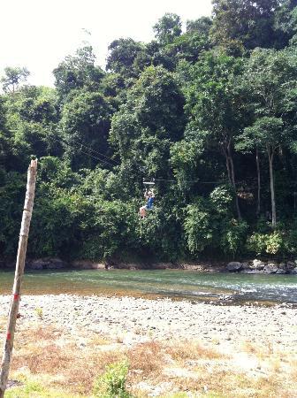 Zip Borneo: Beautiful surroundings