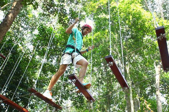 Club Med Cherating Beach: Tree Top Walk