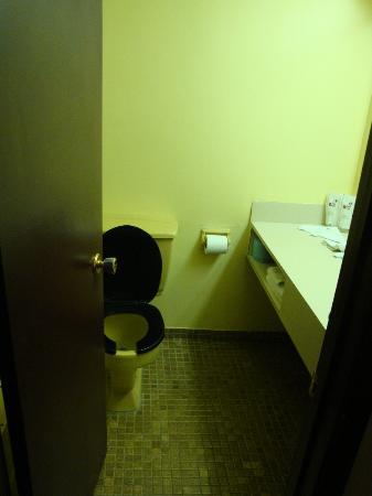Motel Pignons Rouges : Bathroom