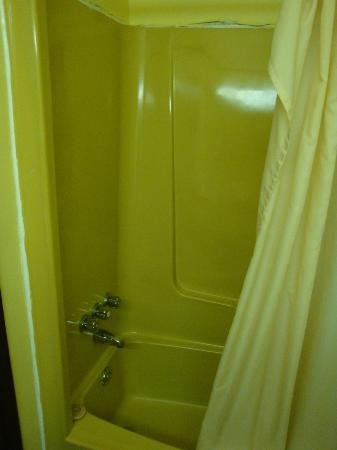 Motel Pignons Rouges : Disgusting Shower