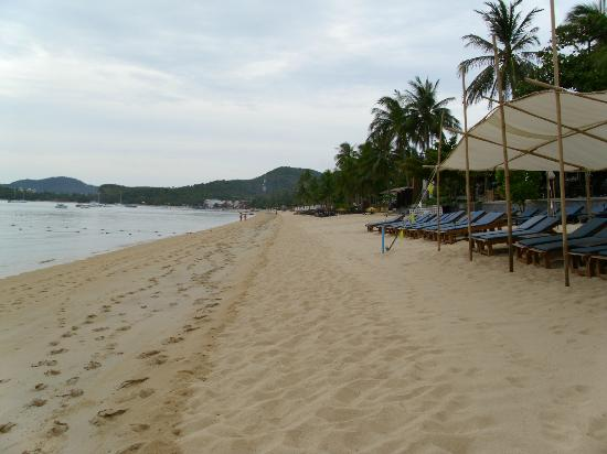 Peace Resort: Strand nach rechts