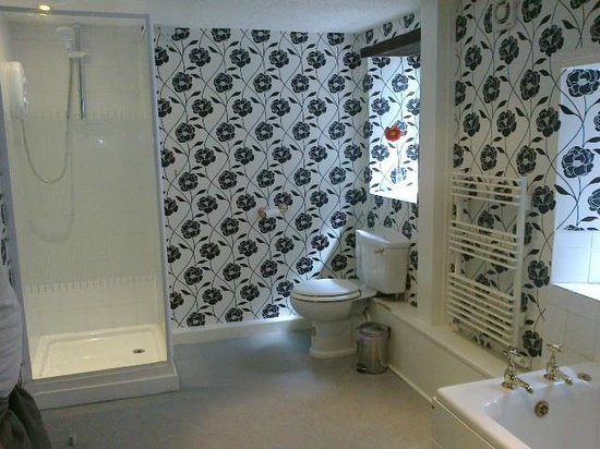 The Black Swan Hotel: Bathroom in Family Room