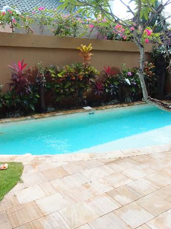 Dyana Villas: Private Pool