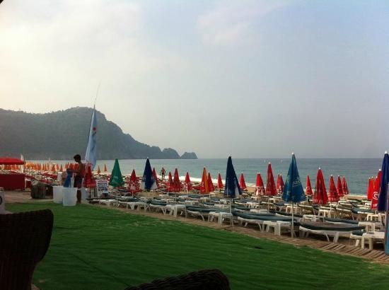 Palmiye Beach Hotel: Utsikt från frukost/middag