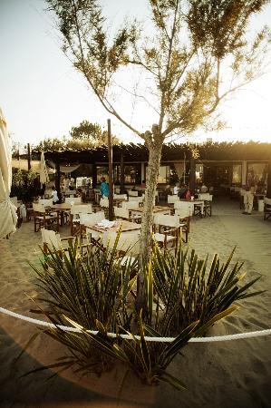 Bagno donna rosa 38 marina di ravenna ristorante recensioni numero di telefono foto - Bagno oasi marina di ravenna ...