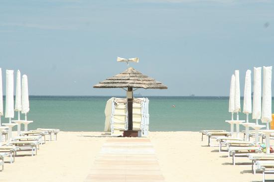 Bagno donna rosa 38 marina di ravenna restaurant reviews phone number photos tripadvisor - Bagno oasi marina di ravenna ...