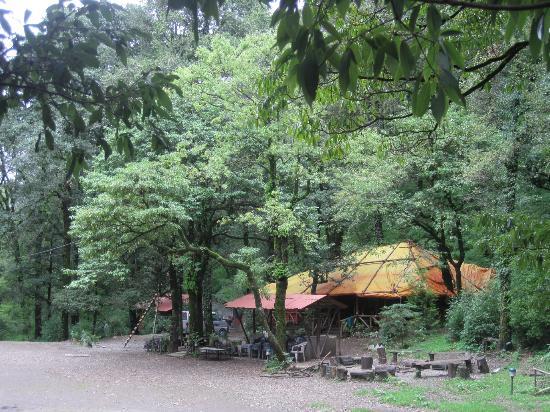 Ayar Jungle Camp : Main camp area and restaurant