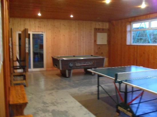 Mettaford Farm Holiday Cottages: Games room