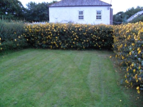 Mettaford Farm Holiday Cottages: Cottage garden