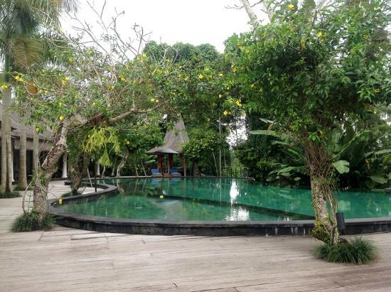 Pandawas Villas: Pool area