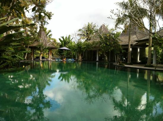Pandawas Villas: Pool area