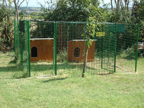 Agriturismo Fattoria Il Bruco: box dei cani