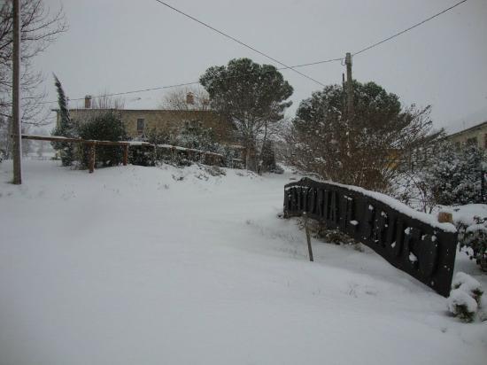 Agriturismo Fattoria Il Bruco: l'inverno