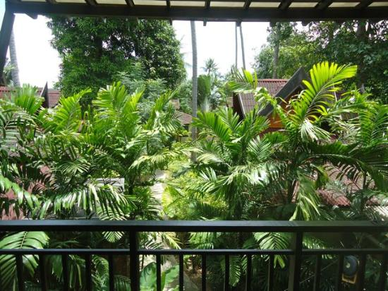 Sunrise Tropical Resort: nice green view from the balcony (you could see giant karsts in the distance too!)