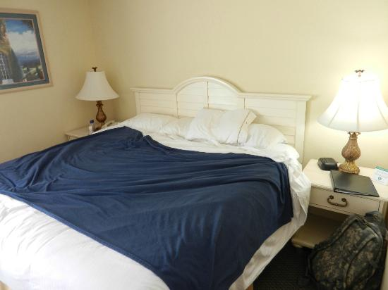 Holiday Inn Express & Suites Wilmington - University Center: This is how I found my bed after maid service