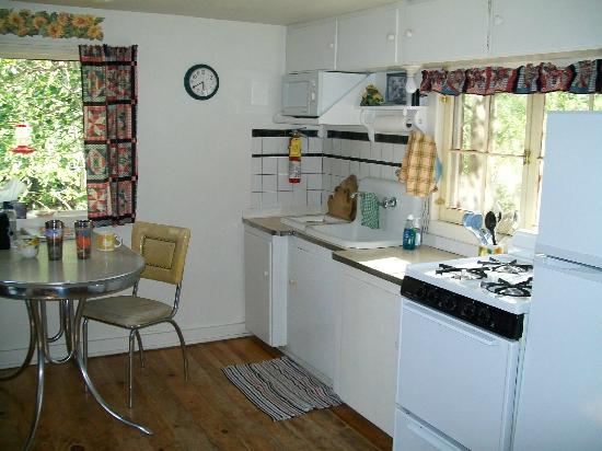 Mount Elbert Lodge: Prospector Cabin kitchen/dining area